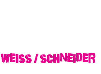 Austrian Youngstar Racing-Team
