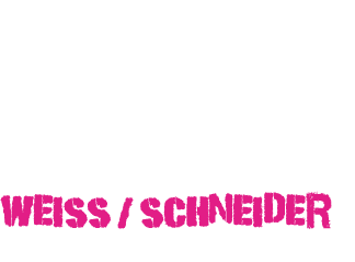 Austrian Youngster Racing-Team